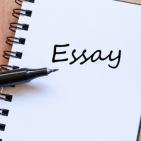 Essaysnassignments