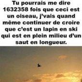 Yvan Fouquet